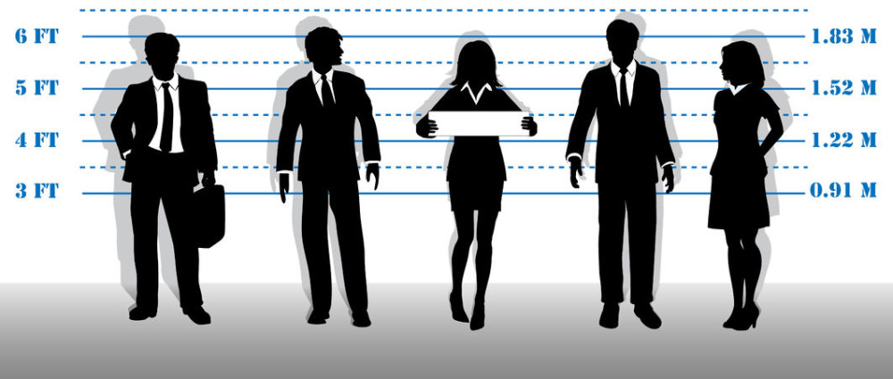 white collar crimes and a case White collar crime cases are usually investigated by federal agencies like the fbi and securities and exchange commission along with state-level agencies.